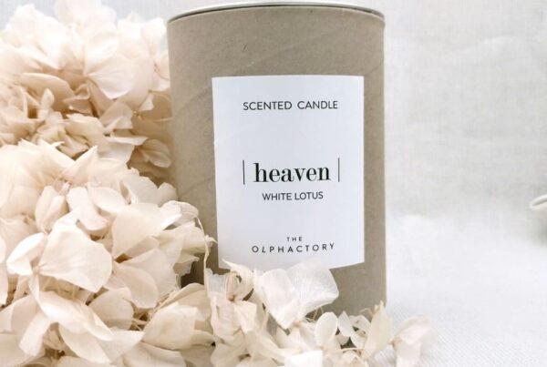 Vela Heaven The Olphactory- Laura Murcia